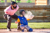 Whitefish_Little_League_2013-49